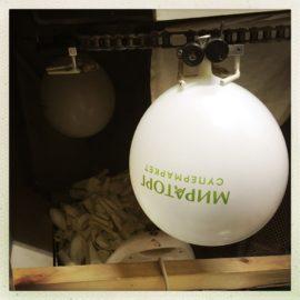 Печать рекламных воздушных шаров
